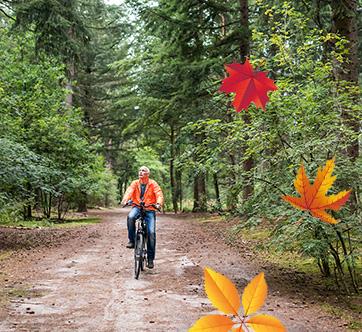 Man fietsend door het bos met vallende bladeren