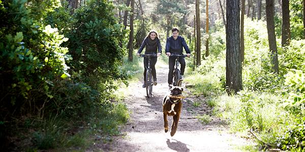 9 redenen waarom fietsen zo gezond is!